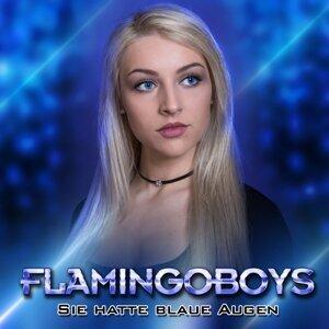 Flamingoboys 歌手頭像