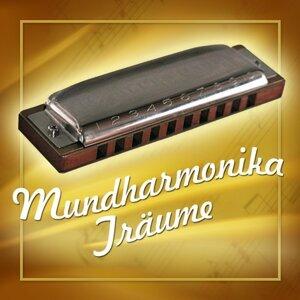 Harmonica Dreamsound 歌手頭像