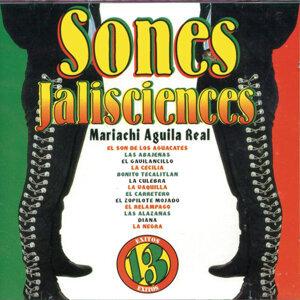 Mariachi Aguila Real 歌手頭像