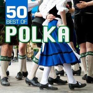 Bohemian Polka Kings 歌手頭像