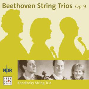 Kandinsky String Trio 歌手頭像