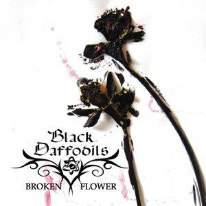 Black Daffodils 歌手頭像