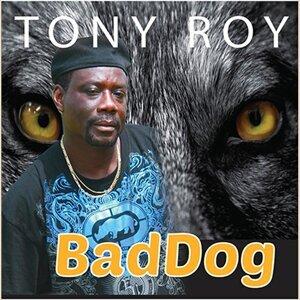 Tony Roy 歌手頭像