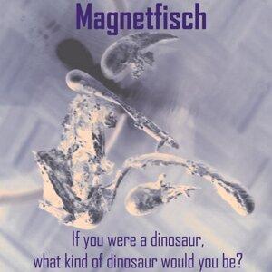 Magnetfisch 歌手頭像