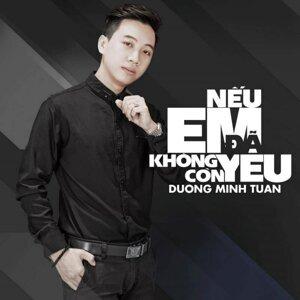 Duong Minh Tuan 歌手頭像