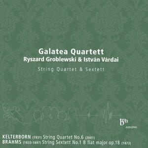 Galatea Quartett 歌手頭像