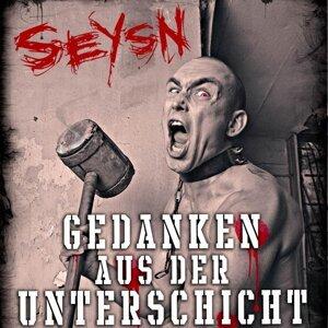 Seysn 歌手頭像