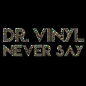 Dr. Vinyl 歌手頭像