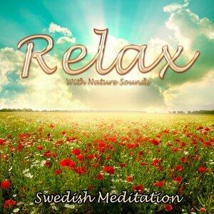Swedish Meditation 歌手頭像