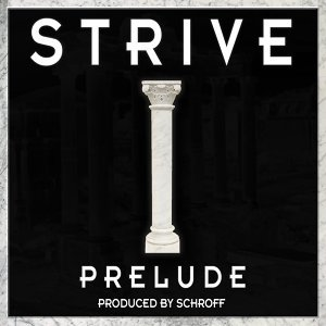 Strive, Schroff 歌手頭像