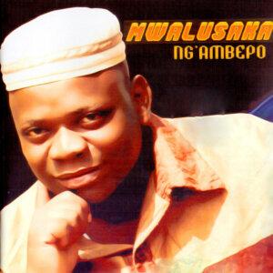 Mwalusaka 歌手頭像