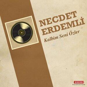 Necdet Erdemli 歌手頭像
