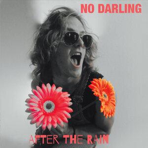 No Darling 歌手頭像