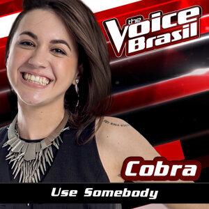 Cobra 歌手頭像