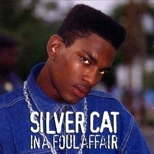 Silver Cat 歌手頭像