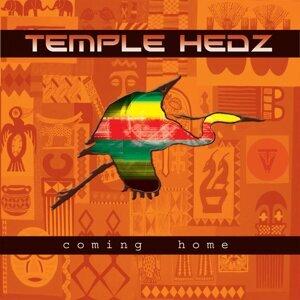 Temple Hedz 歌手頭像
