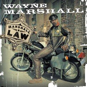 Wayne Marshall 歌手頭像