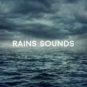 Rains Sound 歌手頭像