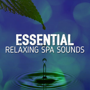 Best Relaxing Spa Sounds 歌手頭像
