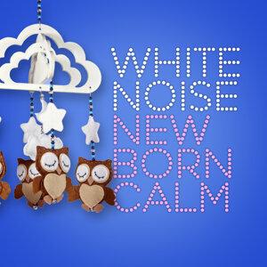 White Noise Baby 歌手頭像