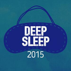 Deep Sleep 2015 歌手頭像