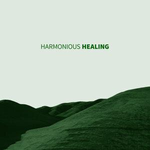 Healing Music 2015 歌手頭像
