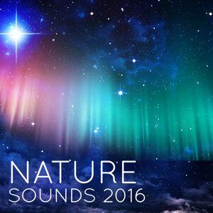 Nature Sounds 2016 歌手頭像