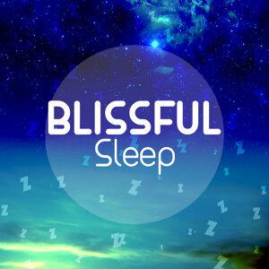 Blissful Sleep Music 歌手頭像