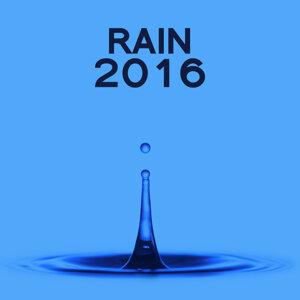 Rain 2016 歌手頭像