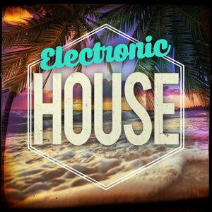 Electronic House 歌手頭像