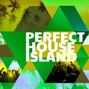 Perfect House Island 歌手頭像
