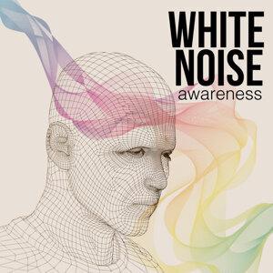 White Noise Awareness 歌手頭像