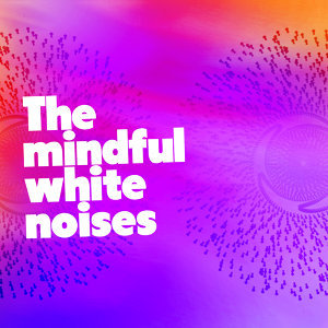 Mindful White Noise 歌手頭像