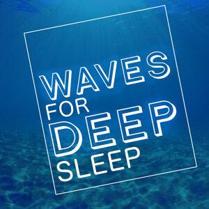 Waves for Sleep 歌手頭像