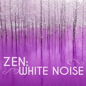 Zen White Noise 歌手頭像