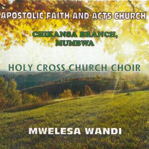 Apostolic Faith And Acts Church Chikansa Branch Mumbwa Holy Cross Church Choir 歌手頭像