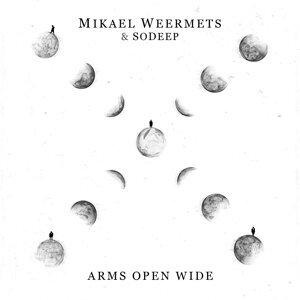 Mikael Weermets 歌手頭像