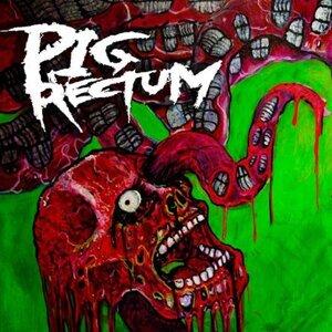 Pig Rectum 歌手頭像