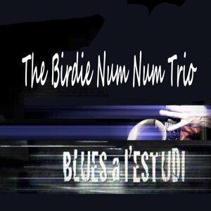 The Birdie Num Num Trio 歌手頭像