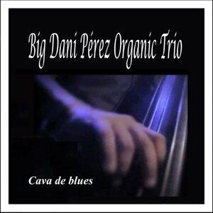 Big Dani Pérez Organic Trio 歌手頭像