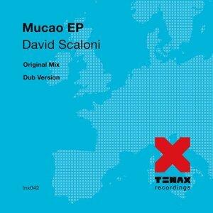 David Scaloni 歌手頭像