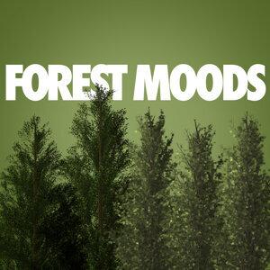 Nature Moods 歌手頭像