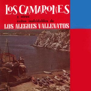 Julio Torres Y los Alegres Vallenatos 歌手頭像