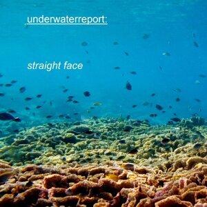 Underwater Report 歌手頭像