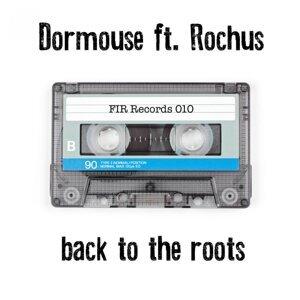 Dormouse & Rok Stibler feat. Rochus 歌手頭像