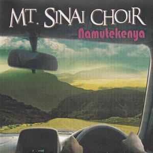 Mt Sinai Choir 歌手頭像