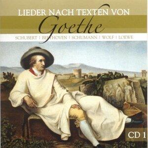 Johann Wolfgang von Goethe, Michael Raucheisen & Michael Raucheisen (Klavier) 歌手頭像