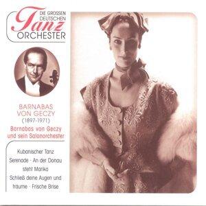 Barnabas Von Geczy und sein Salonorchester 歌手頭像