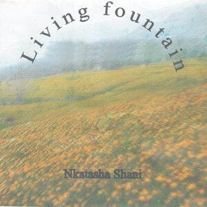 Living Fountain 歌手頭像