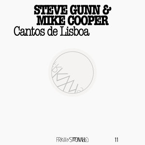 Mike Cooper & Steve Gunn 歌手頭像